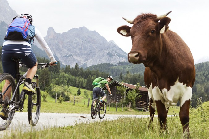 Mountainbike_16_web